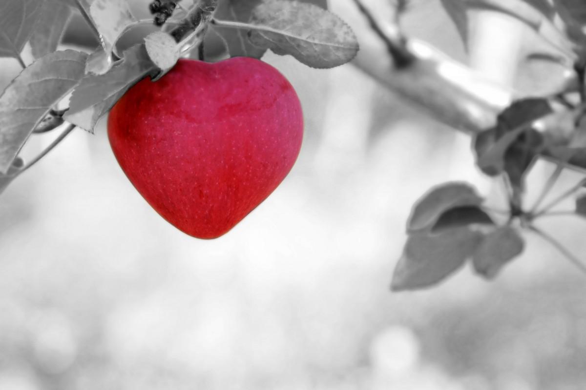 """人間の""""心""""と""""意識""""の関係を、例え話でスッキリ理解する"""